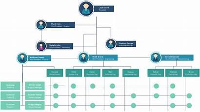 Organizational Chart Template Templates Structure Organization Matrix