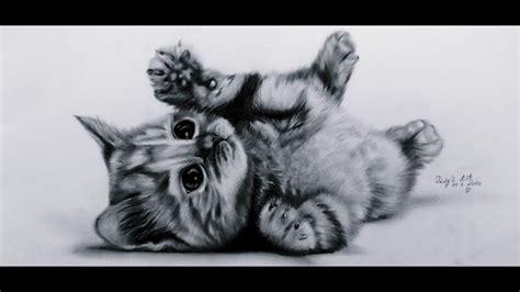 lets draw cute kitten baby cat youtube