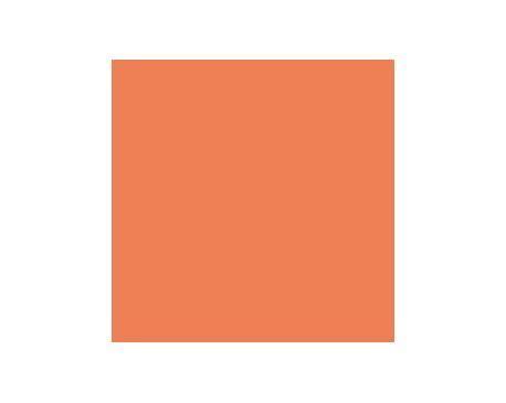 robust orange sw6628 paint by sherwin williams modlar