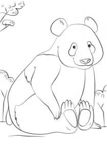 cute panda coloring page  printable coloring pages
