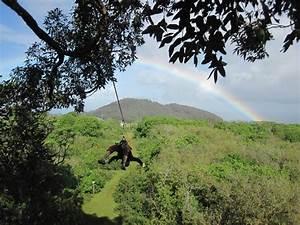 Camp Maui Rocked - Review of Northshore Zipline Co., Haiku ...