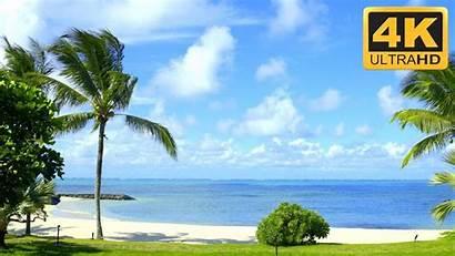 Beach Scene Scenes Screensavers Ocean 4k Uhd