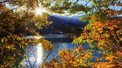 japan nikko tochigi berg  baeume sonnenstrahlen