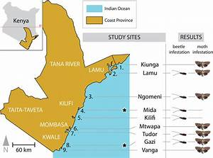 Map Of Kenya Highlighting The Kenyan Coast Region And The Distribution
