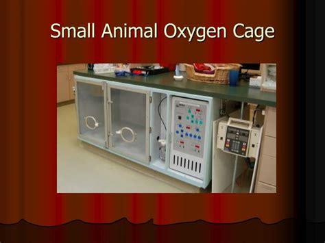 veterinary science cde powerpoint  id