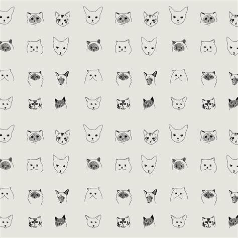 cat wallpaper  baines  fricker pretty dandy