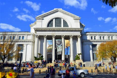 The Smithsonian National Museum Of Natural History The