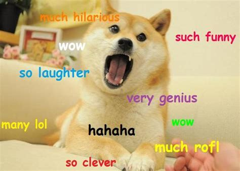 Funniest Doge Meme - doge much funny doge know your meme