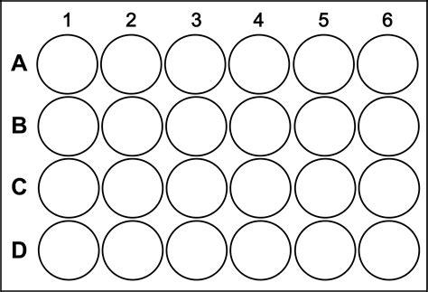 96 Well Plate Template 96 Well Plate Template Sigma Aldrich