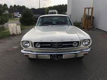 Mustang 1965 Ford Coupe Cars