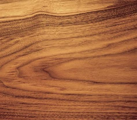 walnut wood walnut the pros and cons of different types of wood real simple