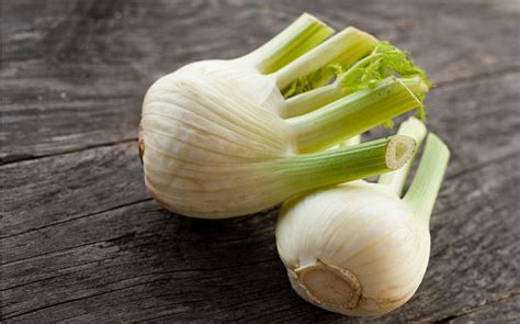 fennel bulb health benefits nutrition recipes