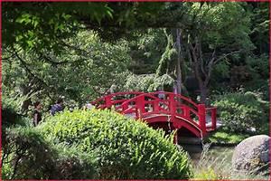 Petit Pont En Bois : pigeonnieresplendy2 le petit pont de bois ~ Melissatoandfro.com Idées de Décoration