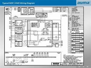Auma Actuators Schematic Wiring