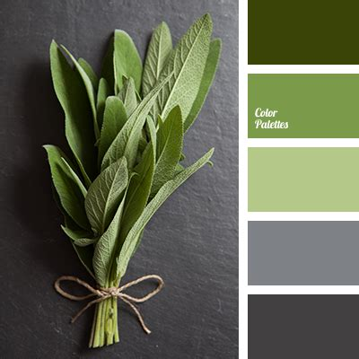Light Green And Dark Gray  Color Palette Ideas