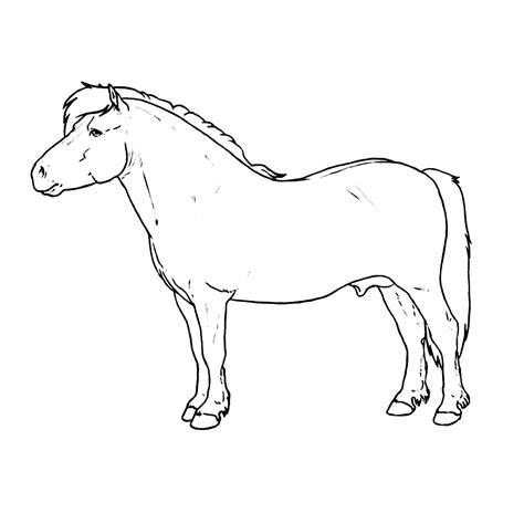 Kleurplaten Shetlanders leuk voor shetland pony