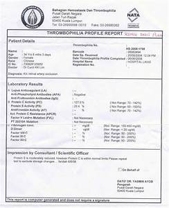 Figure 2 blood report of patient showing protein s for Patient report form template download