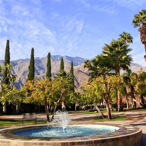 Average Temperature of Palm Springs | USA Today