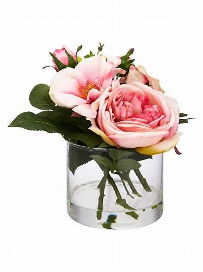 Vase Rose Pink Cylinder Peony Johnlewis