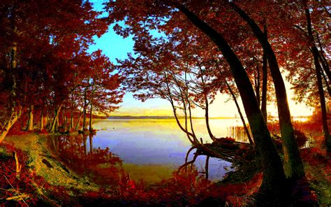 Autumn Lake Wallpapers by Autumn Forest Lake Hd Wallpaper Background Image