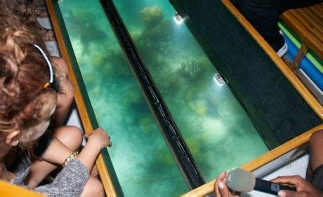 Glass Bottom Boat Cruise Bermuda by 8 Best Glass Bottom Boat Tour Images On Pinterest Boat