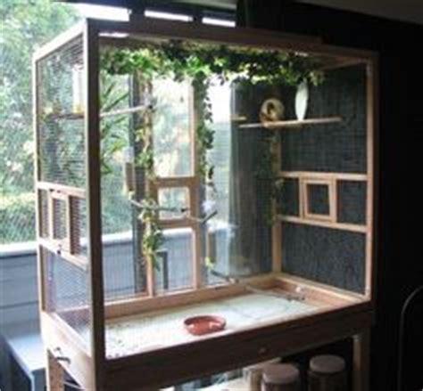 build  large bird cage diy large bird cages