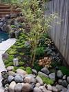 Small Aphonse Karr bamboo in Japanese style garden japanese bamboo garden design