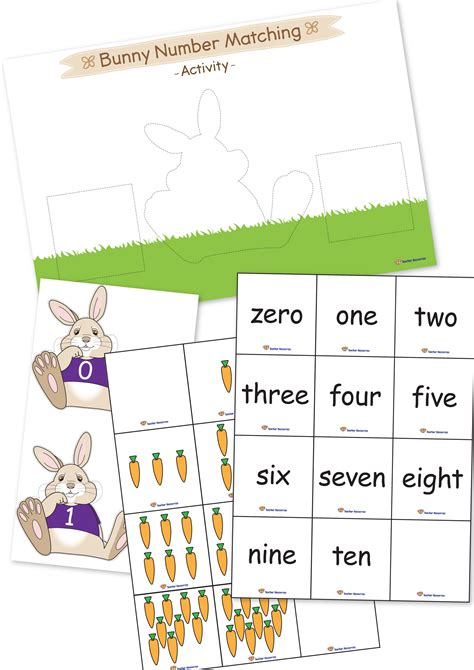bunny number matching activity   teacher resources