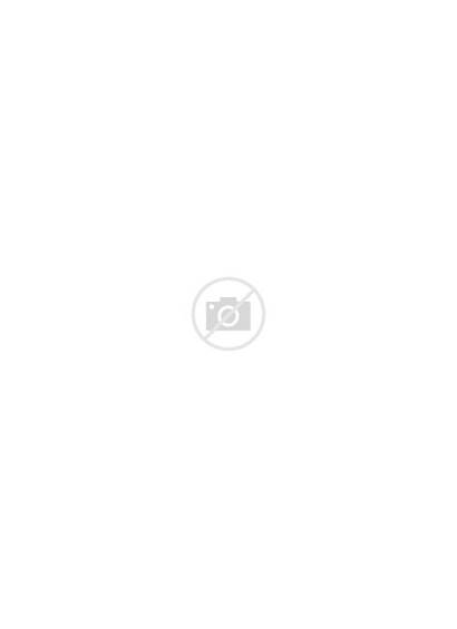 January Flower Birth Carnation Colouring Printable