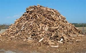 Bois De Chauffage Gratuit : ren 39 buches bois de chauffage b ches densifi es et ~ Melissatoandfro.com Idées de Décoration
