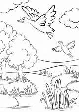 Coloring Grassland Lake Flying Lago Ducks Near Het Deux Printable Foresta Grass Bos Twee Trees Meer Binnen Onder Fall Sotto sketch template
