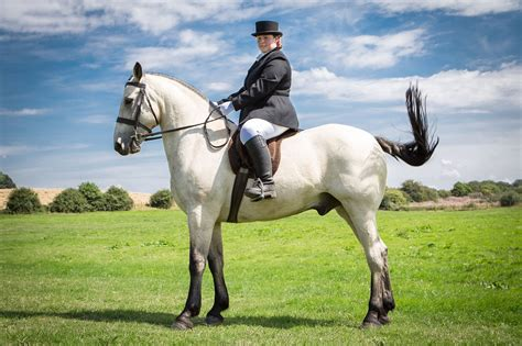 horse blind rider riding riders dressage olympics called disabled woman rio training howarth games