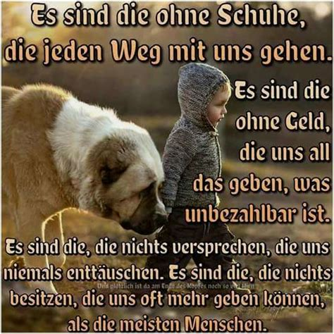 zitate tiere quotes   day