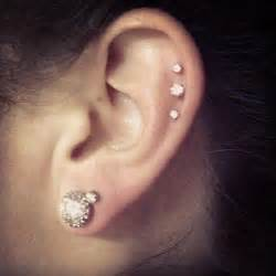 studex earrings 125 best images about ear piercing pictures on