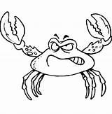 Crab Coloring Angry Fiddler Crabs Disegno Colorare Fight Bambini Template Granchio Furioso Sea Coloringsun Fish Ready Claws Disegni Gratis sketch template