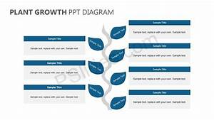 Plant Growth Powerpoint Diagram
