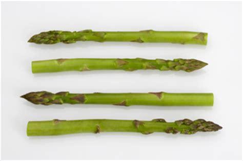 cuisiner les asperges vertes cuisiner les l 233 gumes anciens millefeuille d asperges vertes et topinambours sauce 224 la