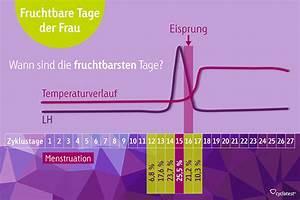 Zyklus Eisprung Berechnen : fruchtbare tage berechnen eisprungrechner ~ Themetempest.com Abrechnung