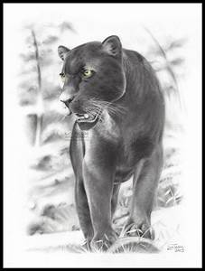 Black panther by LucaTedde on DeviantArt