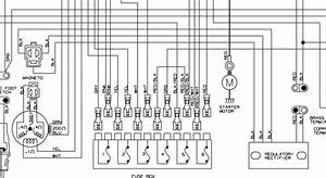 Arctic Cat 500 Wiring Diagram : i fried the rectifier in a 99 arctic cat 400 4x4 the ~ A.2002-acura-tl-radio.info Haus und Dekorationen