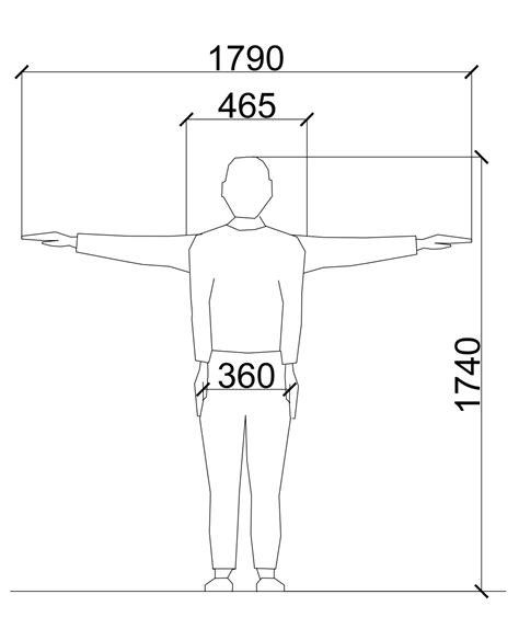 Average Male And Female Dimensions