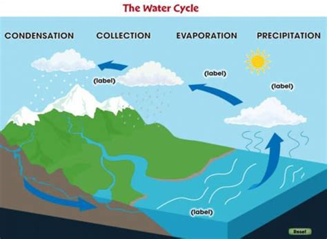Water Cycle Diagram Earthguide by 17 Best Images About The Water Cycle On App