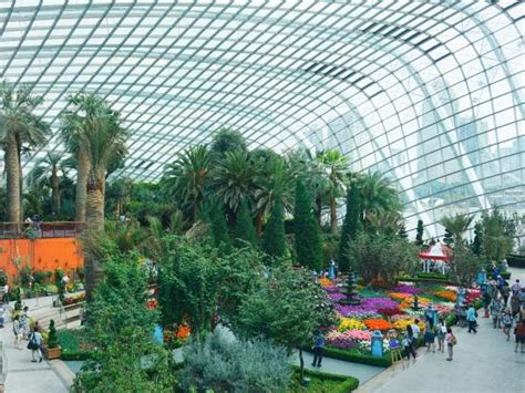 gardens of the bay gardens by the bay picture of gardens by the bay singapore tripadvisor