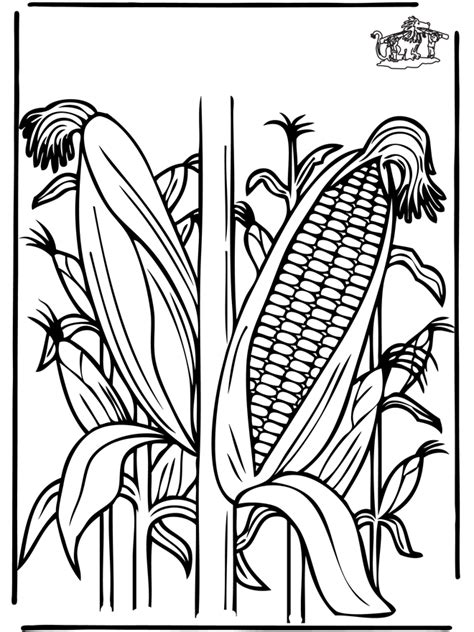 corn plants coloring pages