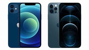 Iphone 12 Vs  Iphone 12 Pro Buyer U0026 39 S Guide