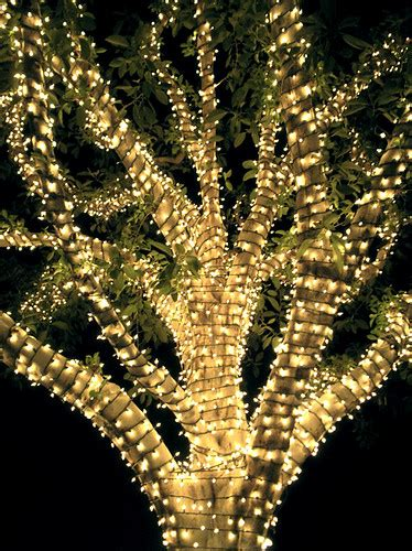 how many lights on christmas tree how many strands of light would it take to wrap