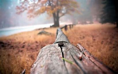 Close Fence Wallpapers