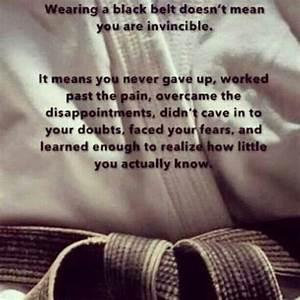 Black belt | ta... Gudo Nishijima Quotes