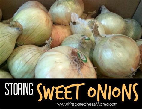 storing sweet onions preparednessmama