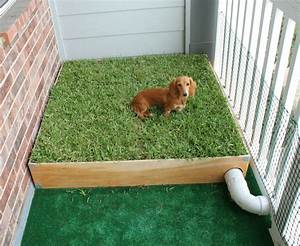 dog porch potty with real grass and drainage system With dog bathroom training